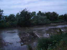poudre at the confluence