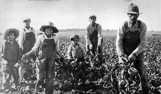 Hispanic Sugar Beet Workers