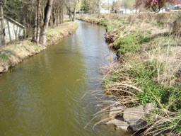 irrigation ditch spring